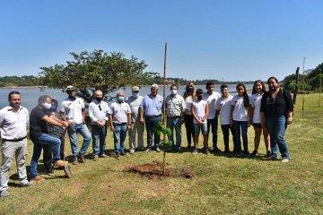 CARU donó árboles para la reforestación de la costa uruguaya