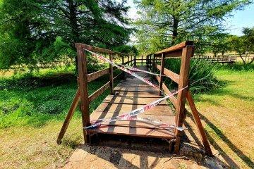 Cómo se podrá visitar el Parque San Carlos con la circulación restringida