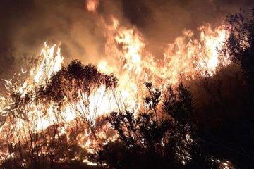 Un incendio que consumió más de sesenta hectáreas se desató en el norte entrerriano