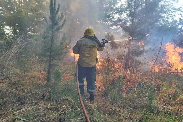 Hasta 10 salidas diarias por incendios forestales.