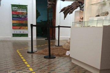 Museos de Concordia ofrecerán recorridos temáticos durante Semana Santa