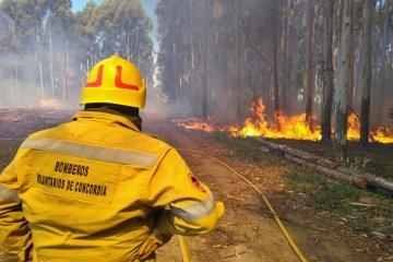 Se prorrogó la prohibición de realizar quemas en todo el suelo entrerriano