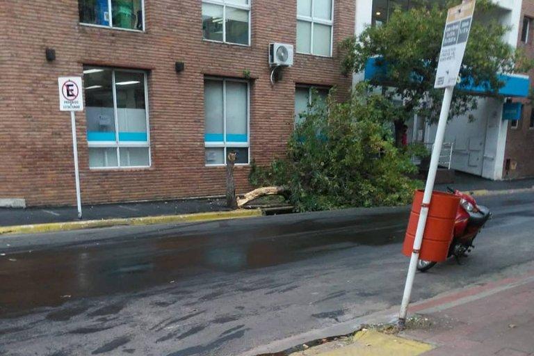 Todo ocurrió en la intersección de calle H. Irigoyen y R. S. Peña.