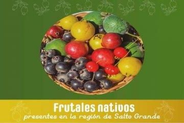Presentan un libro con la recopilación de los frutos nativos en la región de Salto Grande
